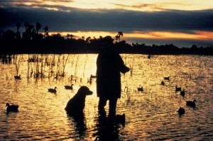 070907133913_man_and_dog_duck_hunting_lg