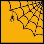 spider20web