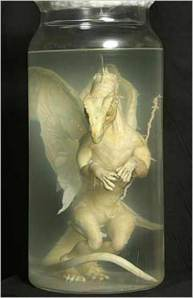 jan24_pickled_dragon