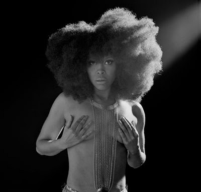 Erykah Badu Charged After Window Seat Nudity Complaint Update
